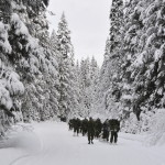 British Columbia Dragoons Winter Training